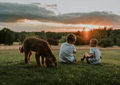 Two boys watching the sunset with their dog, during a family photoshoot