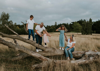 Family walking on a log during a sunset meadow family session