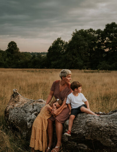 Mother, daughter and son sitting on a log in a meadow watching the sunset